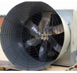 best box negative pressure belt drive exhaust fan Manufactures