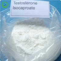 Muscle Enhancement Raw Hormone Powders CAS 15262-86-9 Testosterone Isocaproate Manufactures