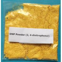 Medical Weight Loss Powder 200-087-7 2,4-DNP Organic Compound Manufactures