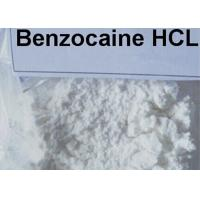 Pure Local Anesthetic Agents Benzocaine Hcl 23239-88-5 For Pain Easing Manufactures