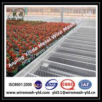 why choose Anping Yilida expanded mesh factory to supply the greenhouse bench? Manufactures