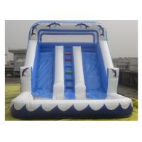 Three lines Inflatable Water Slide With Pool For Kids / Adults Inflatable Slide Park Manufactures
