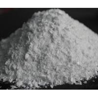 Healthy Organic Food Additives Improver Crumb Softness , Food Grade Lactose Fungus Amylase Manufactures