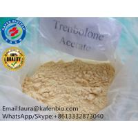 China 99% Purity Ananbolic Trenbolone Steroids Hormone Powder Trenbolone Acetate CAS:10161-34-9 on sale