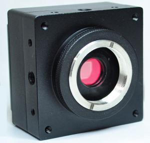 Cheap Digital 2.0MP Microscope CCD Camera 1/1.8 Inch Wiyh Progressive Scan BUC4B - 200C for sale