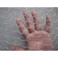 Hot Dipped Galvanized Hexagonal Wire Netting , Silver Ornamental Wire Fence