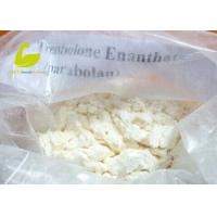 White Crystalline Powder Muscle Building Steroid Hormone Powder Testosterone Enanthate Manufactures