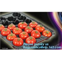 China plastic plant vegetable nursery high quality seedling trays wholesale,98/105/128 cell holes vegetable plant seedling pla on sale
