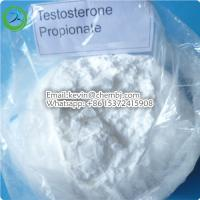 99.25% Purity Testosterone Steroids White Powder Testosterone Propionate for Muscle Growth Manufactures