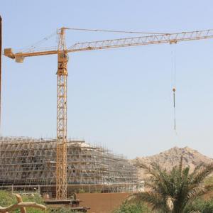 QTZ63(5010) building tower crane Manufactures