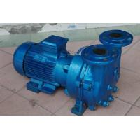 China 2BV5121 Single Stage Water Ring Vacuum Pump on sale