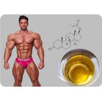 Testosterone Propionate Oil - based Injectable Testosterone Steroid Powder Manufactures