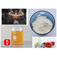 China Pharmaceutical Tren Anabolic Steroid Trenbolone Acetate with Revalor-H Finaplix Cycle Tren a 100 mg/Ml on sale
