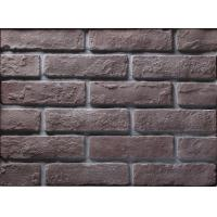 Building Thin Veneer Brick Wall With Size 205x55x12mm , Wear Resistance Manufactures