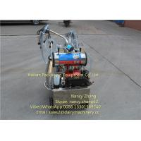 25 Liter High Speed Portable Milking Machine For Homehold Cow Manufactures