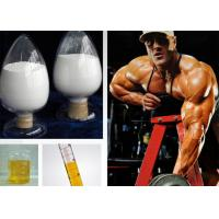 Injectable Homebrew Testosterone Steroid Acetate for Muscle Building , CAS 1045-69-8
