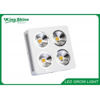 China Professional Cree Cob Hydroponic Led Grow Lights High Times With HPS Lamp on sale