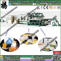 China CE APPROVED ps food box production line PS Fast Food container Making Machinery on sale