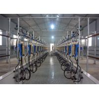China Parallel Quick-Release Automatic Milking Parlour  with Waikato Milk Flow Meter on sale
