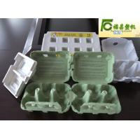 paper egg tray/box production machine(FCZMW-12) Manufactures
