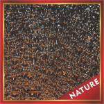 Cheap Diamond polycarbonate panel for sale