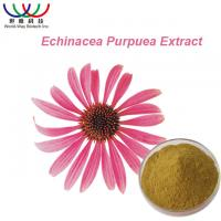 Polyphenol Natural Herbal Extracts , Echinacea Purpurea Root Extract Powder Manufactures