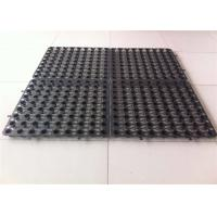 China Plastic HDPE Drainage Sheet for Planted Roof, plastic drainage, Plastic HDPE Drainage Sheet for Planted Roof on sale