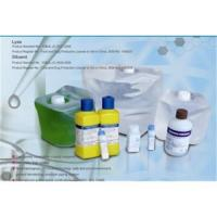 China Hematology Analyzer Reagents on sale