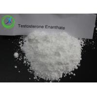 Anabolic Testosterone Steroids enanthate powder injectable CAS 315-37-7 Manufactures