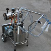 Cheap Single Bucket Portable Vacuum Pump Milking Machine With 250 l / Min Vacuum Pump Capacity for sale