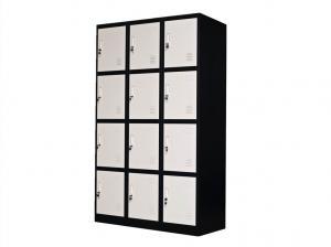 Electrostatic 12 Door Steel Locker Manufactures