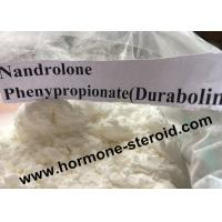 Injecting Anabolic Steroids Nandrolone Phenylpropionate / NPP For Nandrolone Steroid 62-90-8 Manufactures