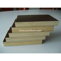 China structural plywood on sale