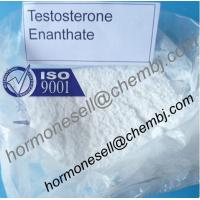Cheap Testosterone enanthate Muscle and Strength gain Testosterone Hormone male hormone steroids for sale