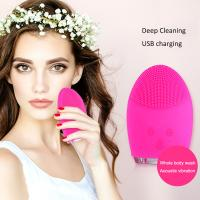 Beauty Care Face Cleansing Scrubber Manufactures