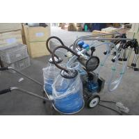 China Double Bucket Mobile Milking Machine for Cow (Vacuum Pump-Type) on sale