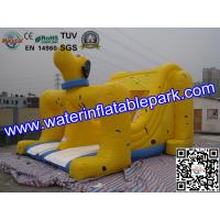 Adults And Kids Dog Inflatable Dry Slides For Amusement Park Manufactures