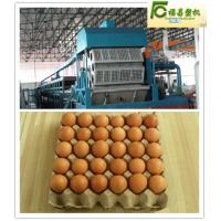 CE automatic roller type paper pulp moulding machine (FCZMG4-32) Manufactures
