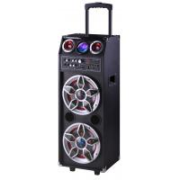 China Pro Audio Bluetooth Microphone PA Disco Light Portable Party Speaker System on sale