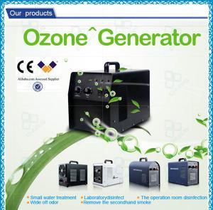 Ozone Generator Car Air Purifier / Home Air Purifier