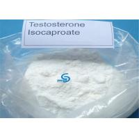 99% Oral Anabolic Injection Steroid Hormones Testosterone Isocaproate Testosterone ISO Manufactures