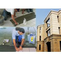 Interior / Exterior Wall Ceramic Wall Tile Adhesive Fast Setting Manufactures