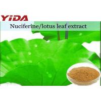 Lotus Extract Nuciferine Weight Losing Raw Materials Root / Leaf / Seeds