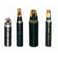 Cables Products & Services PVC Insulation & Sheath Power Cable of 0.6/1 kV or Lower Manufactures