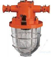 Explosion Proof distribution equipment Mine Flameproof incandescent Click to see big picture