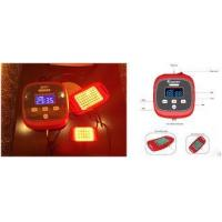 Privacy Disease Treatment Infrared Light Therapy Devices With 2 Irradiation Probe Manufactures