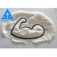 CAS 1045-69-8 Short Acting Steroids Testosterone Acetate White Powder Manufactures