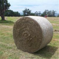 Green Leaf Bale Net Wrap-Plus Manufactures