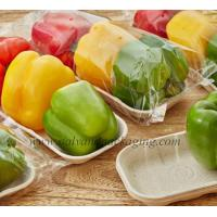Vegetable Tray Manufactures