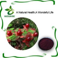 Cosmetic Additive Cranberry Extract Anthocyanidins
